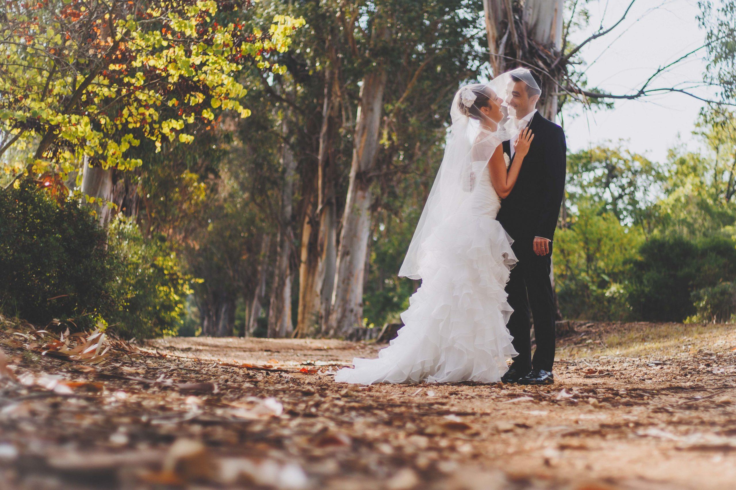 mariés bois nature